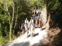 Trekking equestri in Umbria