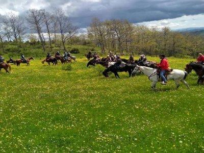Giornata a cavallo a Roma Nord con pranzo incluso