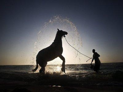 A piedi con il cavallo nella natura di Roma (2h)