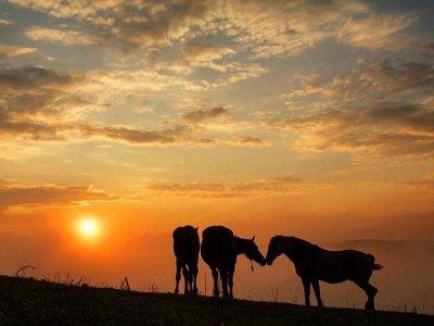 Escursione di 2 giorni con cavallo a Roma