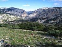 Visita Al Canyon