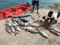 Il bottino della giornata di pesca