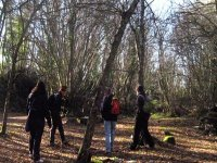Eventi tra gli alberi