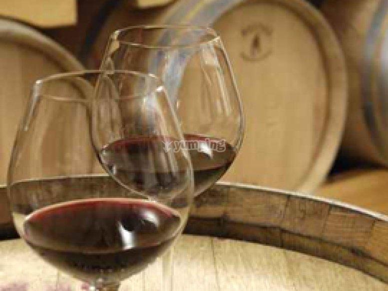 Il nostro vino