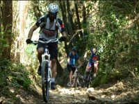 Greve in Chianti Mountain bike