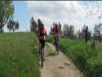 Tour Montalbano