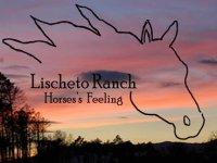 Lischeto Ranch
