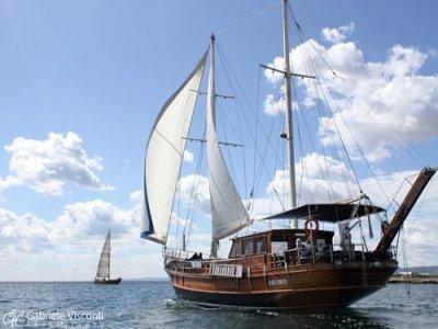 Marasciulo Charter Pesca