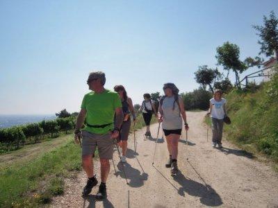 Nordic Walking Friends