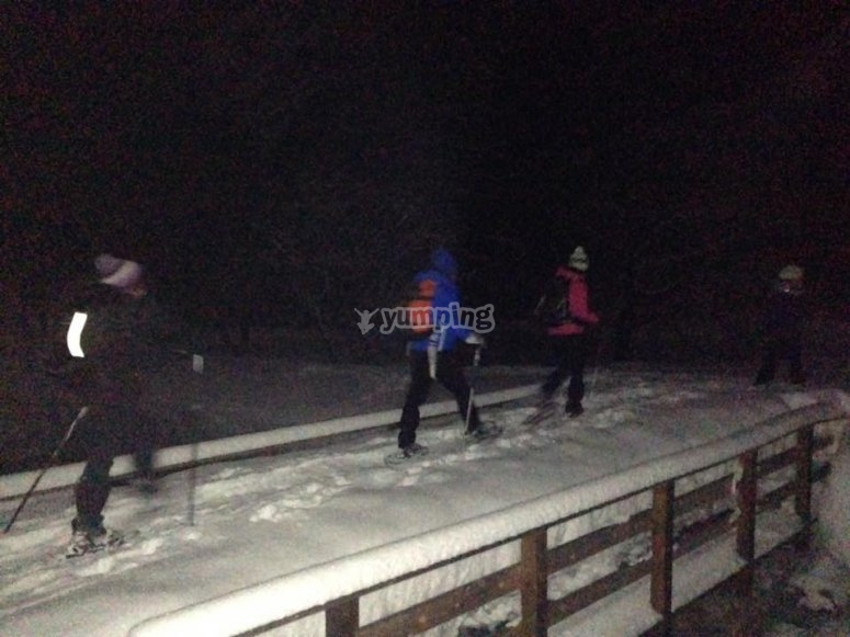 at night on the snow