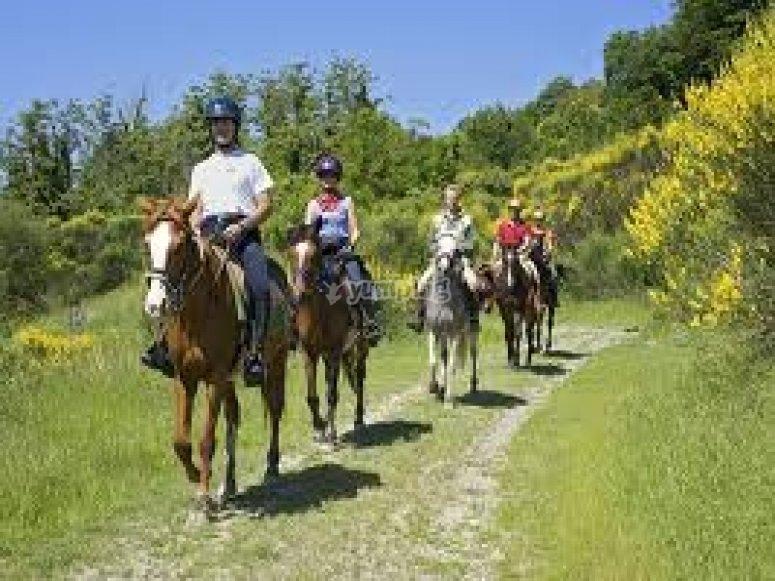 Passeggiata a cavallo con lezioni di falconeria