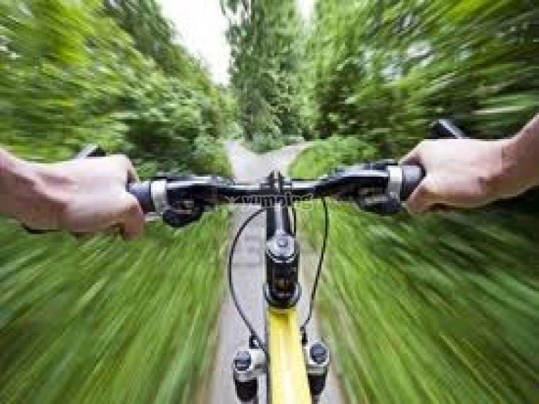 Escursione in bicicletta a pedalata assistita