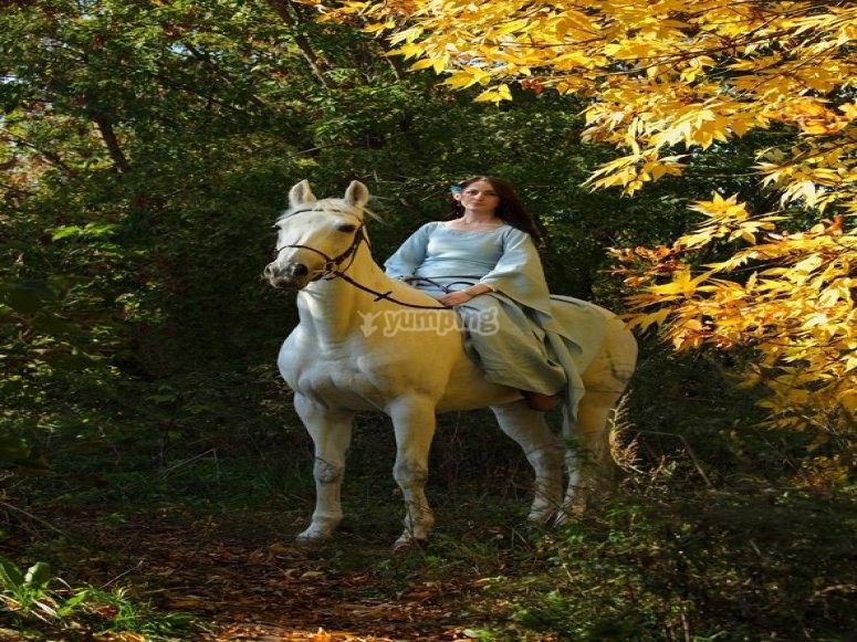 Escursione a cavallo con i falchi