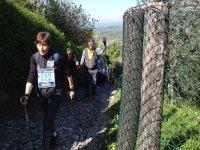 Camminata nordica a Mestre