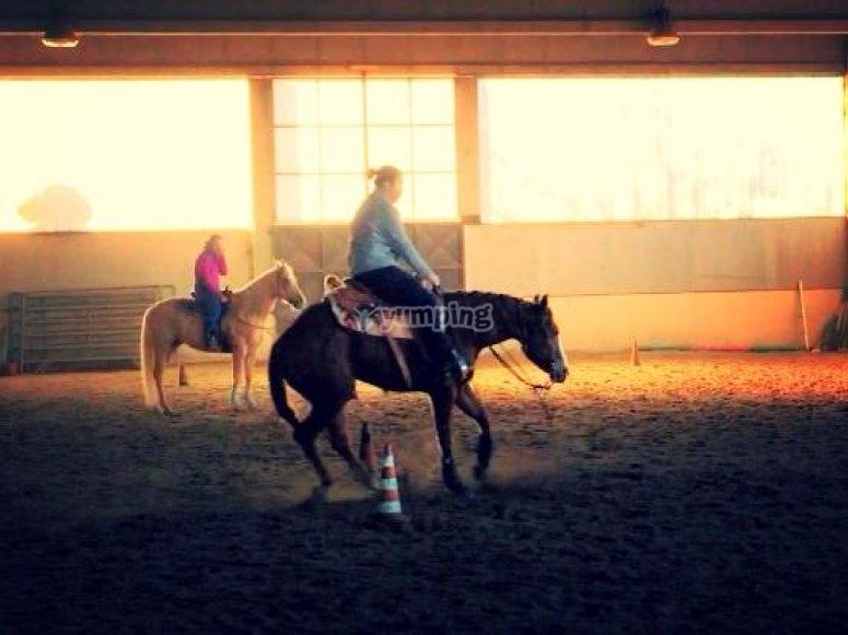 Corsi equitazione di tutti i livelli