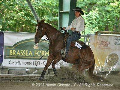 American Riding Intermediate Course