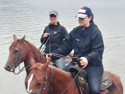 American Horse Riding Basic Course