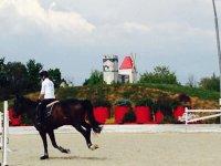 i corsi di equitazione de Il Casale