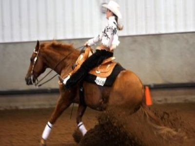 Bastianello Horses A.s.d.