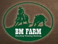 BM Farm