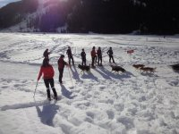 Guided snowshoeing