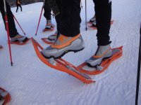 Equipment for snowshoeing