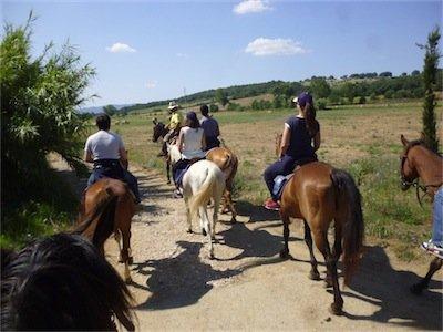 Passeggiate a cavallo 2 ore per semi-principianti