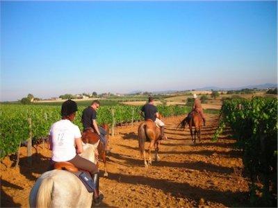Trekking a cavallo in Maremma 1 giorno e 2 notti