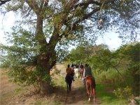 Trekking equestre Maremma 1giorno 2notti in b&b