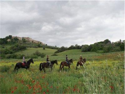 Trekking EQUIWINE in Maremma (2 gg di cavallo)
