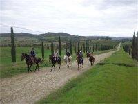 Fra le colline del Morellino a cavallo