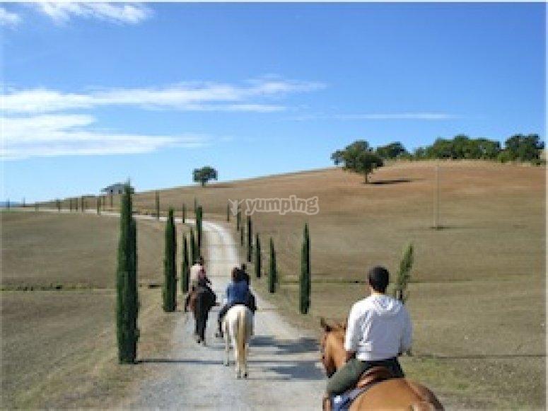 passeggiata fra le colline toscane