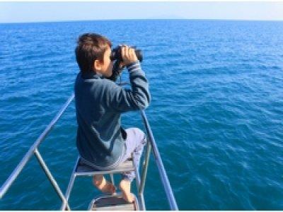 Econauta Whale Watching