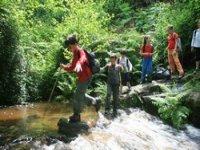 Piccoli escursionisti