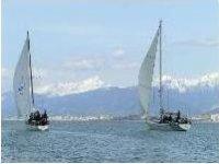 In flottiglia