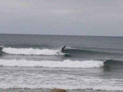 Corso di Surf in 2 giorni al Poetto
