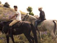 la bellezza dei cavalli