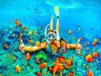 snorkeling in Campania
