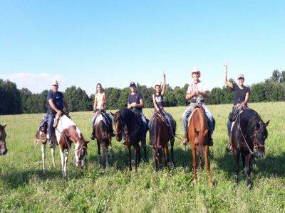 Passeggiata con cavalli Quarter Horses (1h) Torino