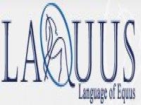 Laquus