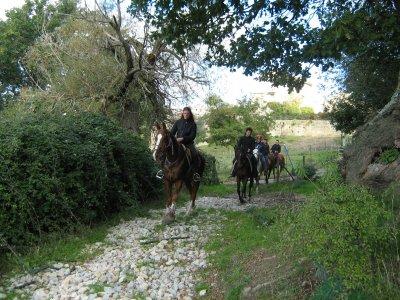 ASD Equitazione Baglio San Pietro