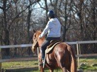 Di spalle e il cavallo