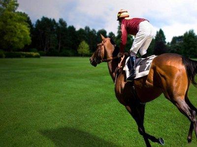 Escursione a cavallo Somma Lombardo 2 ore