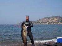 Corsica Giugno 2005