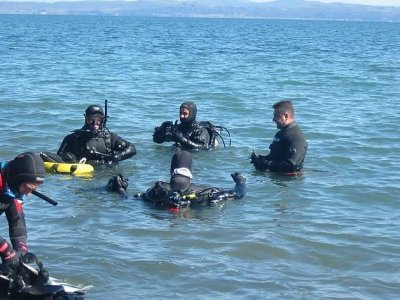S.T.A.R. Diving