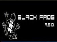 Black Frog asd