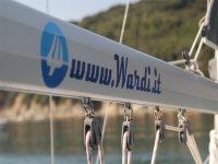 WNS logo & website