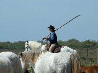 Nel Ranch.JPG