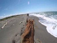 a cavallo sulle nostre coste