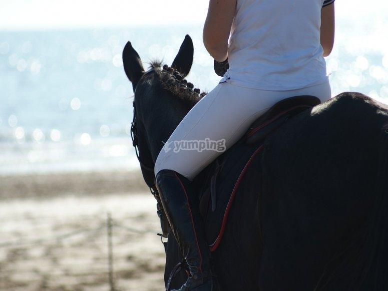 al mare con il cavallo
